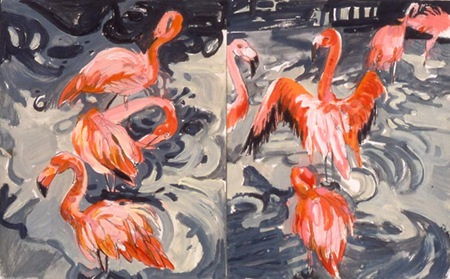 orlando-flamingos-thumb
